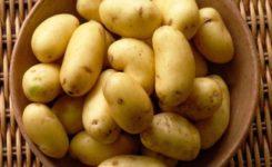 Como cozinhar batatas no micro-ondas