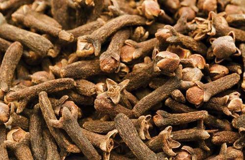 Benefícios e utilidades do cravo da índia